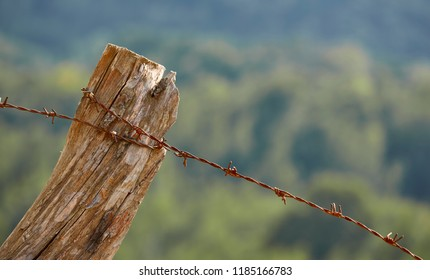 Rusty barbed wire on old wooden pole against blurred background. Property protection. Privacy warning. No trespassing. Liberty border.