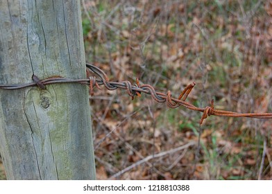 Rusty barbed wire on an old 2X4 fence post