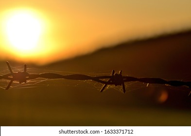 Rusty barbed wire at sunset symbolizing oppression, totalitarianism and war conflict.