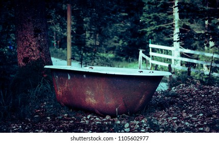 A rusty bathtub in the forest which is used as a trough for the cattle. Recorded in Germany.