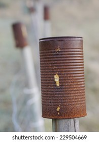 rusty cans over pales of a fence