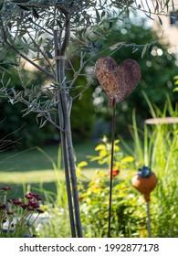 rusty decorative heart beside a olive tree