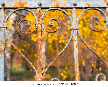 Rusty Heart Autumn