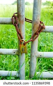 A rusty metal chain on a gate at a farm