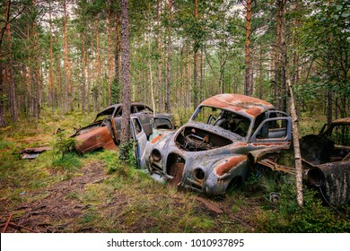 Rusty old abandoned cars in forest