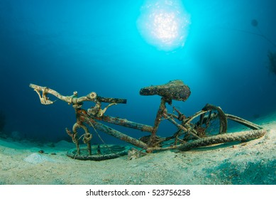 A rusty old bike at the bottom of the sea. This bicycle has been dumped in the tropical caribbean sea and later photographed by a scuba diver