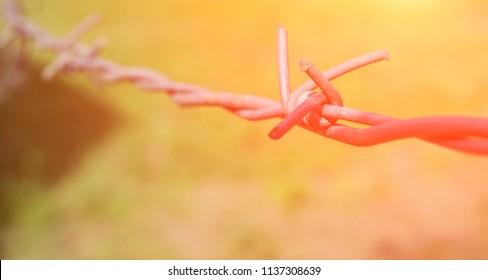 rusty sharp bare wire