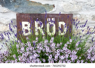 A rusty sign saying bread in swedish among blooming lavender and thyme