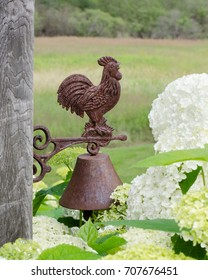 Rusty Steel Rooster Dinner Bell on Barn Board with Flowers and Field, selective focus.