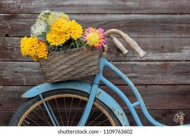 Rusty vintage blue bike with basket of flowers against barnwood backround