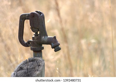 Rusty water spigot with dry grass in the back ground
