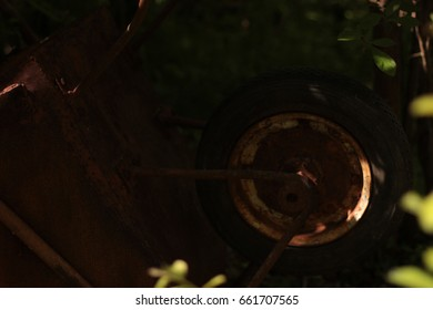Rusty wheel from the wheelbarrow
