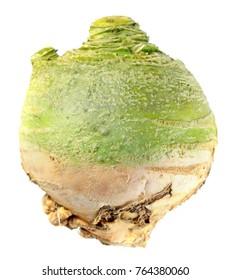 Rutabaga or Swedish turnip isolated on white background
