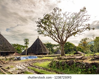Ruteng Puu tradtional village, wooden houses typical for the Manggarai district in Flores Island, Indonesia
