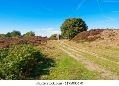 A rutted footpath leads uphill towards the ancient monolith known as the Cork Stone on Stanton Moor.