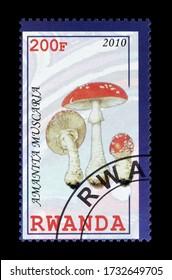 RWANDA - CIRCA 2010 : Cancelled postage stamp printed by Rwanda, that shows mushroom, circa 2010.