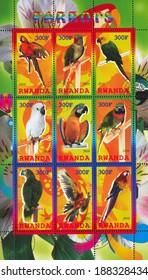 RWANDA - CIRCA 2010: stamp printed by Rwanda, shows Parrot, circa 2010