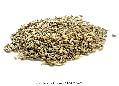 Rye grains isolated on white background. Pile of rye grains isolated on white. Organic rye grains isolated on white.