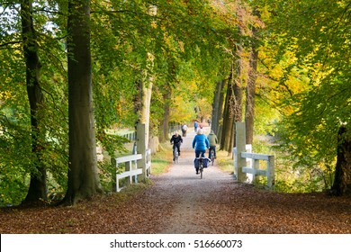 'S GRAVELAND, NETHERLANDS - OCT 29, 2016: Active people riding bicycles on path in woods in autumn on estate Boekesteyn, 's Graveland, Netherlands