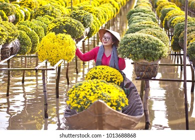 Sa Dec Flower Village , Sa Dec town, Dong Thap province, Vietnam - January 23, 2018: Woman wearing Vietnamese traditional clothing (ao ba ba) sitting on on sampan, in yellow daisy floating farm