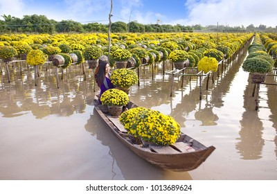 Sa Dec Flower Village , Sa Dec town, Dong Thap province, Vietnam - January 23, 2018: Young girl wearing Vietnamese traditional clothing (ao ba ba) on sampan, in yellow daisy floating farm