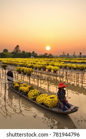 Sa Dec Flower Village , Sa Dec town, Dong Thap province, Vietnam - February 07, 2015: Farmers in sampan, preparing transport flowers to the market for sale in Tet holiday