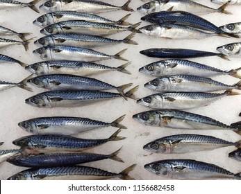 Saba fish on ice In the supermarket