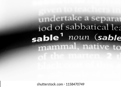 sable word in a dictionary. sable concept.