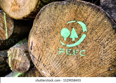 Sachsenburg, Germany - June 19, 2016: A tree trunk marked with the PEFC logo. The Programme for the Endorsement of Forest Certification Schemes (PEFC) is an international forest certification system.
