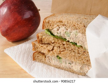 A sack lunch for a child with a tunafish sandwich and apple