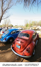 Sacramento, CA - April 5, 2009: Volkswagon cars participating in a charity even, called Ranch Run. Vintage VW Beatles outdoors under trees.