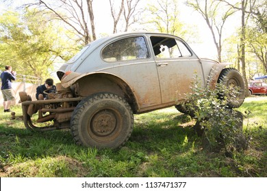 Sacramento, CA - April 5, 2009: Volkswagon cars participating in VW Ranch Run. Off road, tough mudder modified VW Beetle in the forest.