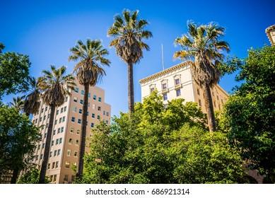 sacramento california city skyline and street views