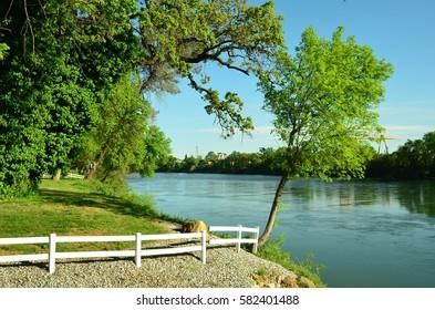 Sacramento River in Northern California