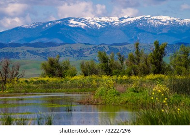 Sacramento Wildlife Refuge, looking east to the snowy coastal range.
