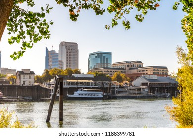 Sacramento's skyline and waterfront framed by tree branches, as seen from the banks of Sacramento river of a sunny morning; California