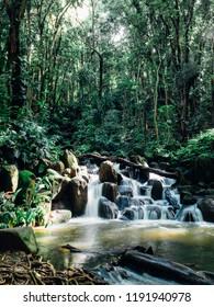 Sacred green jungle stream waterfall in Kauai, Hawaii