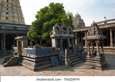 Sacred tree mango dedicated to the union of Siva and Parvati. Ekambareswarar temple is Hindu temple. Kachi Ekambam old shiva temple. Largest temple in the town of Kanchipuram. Tamil Nadu, India.