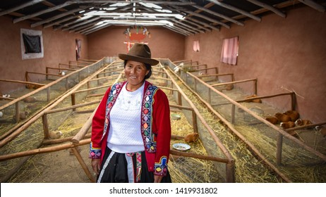 Sacred Valley, Cusco, Peru - Oct 13, 2018: A proud Quechua Andina lady at her guinea pig farm in the Sacred Valley of the Incas
