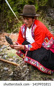 Sacred Valley, Cusco, Peru - Oct 13, 2018: Indigenous Quechua lady with Achupalla plants in the Yachaq community of Janac Chuquibamba