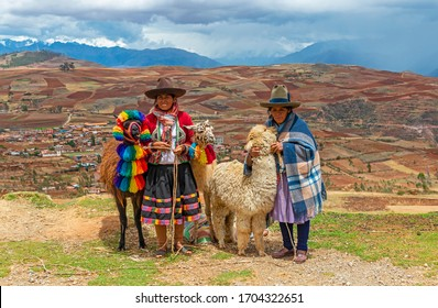 SACRED VALLEY, PERU - OCTOBER 31, 2019: Two Quechua indigenous women in traditional clothing with two llamas and one alpaca in the Sacred Valley of the Inca, Cusco.