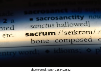 sacrum word in a dictionary. sacrum concept.