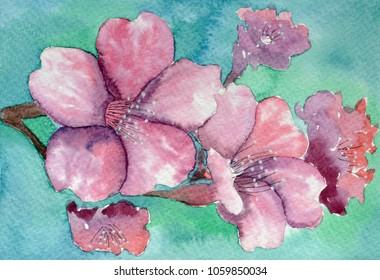 Sacura blossom branch watercolor floral bouquet