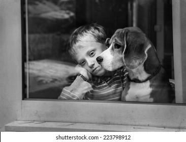 Sad boy with dog waiting near the window
