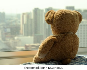 Sad brown teddy bear doll sitting alone on window shield looking outside, feel alone, sad and disappointed.