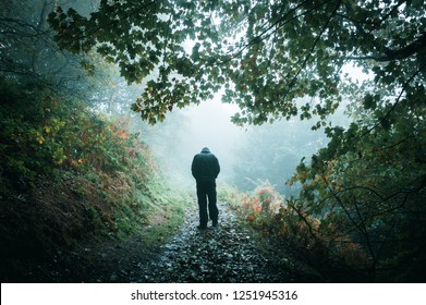 A sad hooded figure walking away from the camera on a misty woodland path with shoulders hunched and looking down.