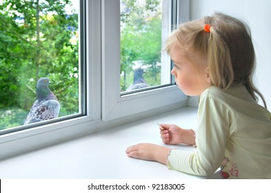 A sad little girl looks at a pigeon outside the window