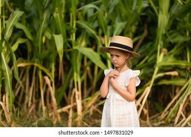 Sad Little kid in a hat standing in the middle of a corn field. Harvest time. organic agriculture for children. Cute child on a sunny summer day outdoor. Sun light. Happy children day concept