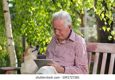 Sad senior man with his dog sitting on bench in garden, looking at tablet and crying