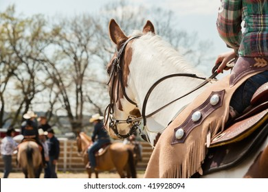 In the saddle horse on Western race, beautiful paint horse in a barrel racing event at a rodeo in Mitrov, Czech republic